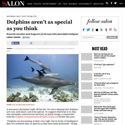 Dolphins aren't as special as you think