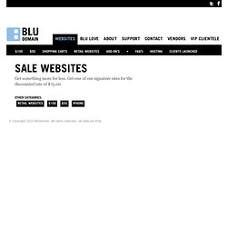 Blu Domain | Website | Template | Sale