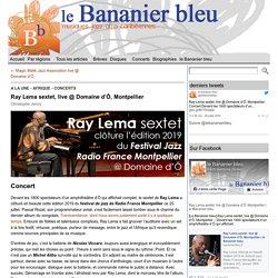 Ray Lema sextet, live @ Domaine d'Ô, Montpellier