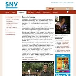 Netherlands Development Organisation (SNV Biogaz domestique en Asie, Afrique, Amérique latine