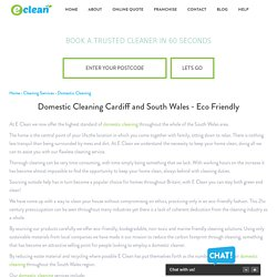 Domestic Cleaning Cardiff and South Wales