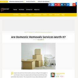 Are Domestic Removals Services Worth It?