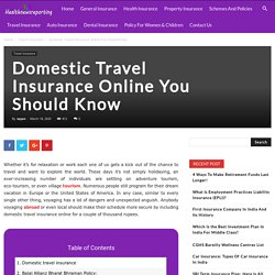 Domestic Travel Insurance Online You Should Know - Your Guide to Insurance