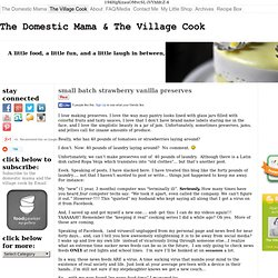 The Domestic Mama & The Village Cook « life is about having good food,good fun, and a good laughThe Domestic Mama & The Village Cook