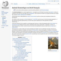 Animal domestique en droit français