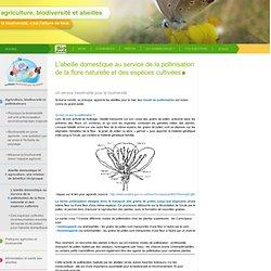 L'abeille domestique au service de la pollinisation de la flore naturelle et des espèces cultivées