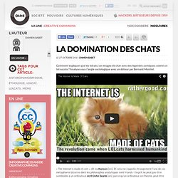 La domination des chats