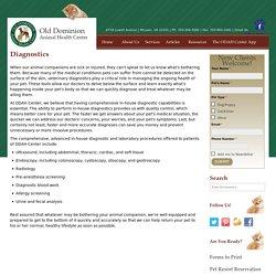 In-house pet diagnostic services