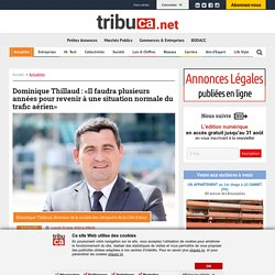 Dominique Thillaud : «Revenir à une situation normale du trafic aérien»