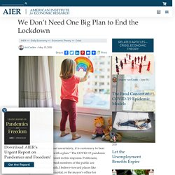 We Don't Need One Big Plan to End the Lockdown – AIER