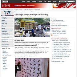 Donkeys boost Ethiopian literacy