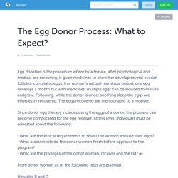 The Egg Donor Process: What to Expect?