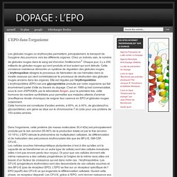 Dopage : EPO: L'EPO dans l'organisme