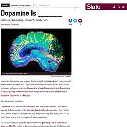 What is dopamine? Love, lust, sex, addiction, gambling, motivation, reward