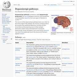 Dopaminergic pathways