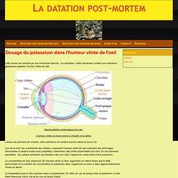 Dosage du potassium dans l'humeur vitrée de l'oeil - La datation post-mortem