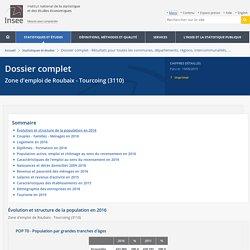 Dossier complet − Zone d'emploi de Roubaix - Tourcoing (3110)