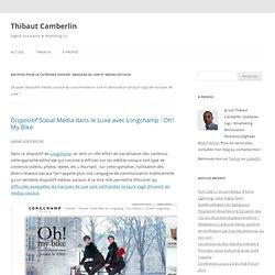 Dossier : Marques de Luxe et Médias Sociaux