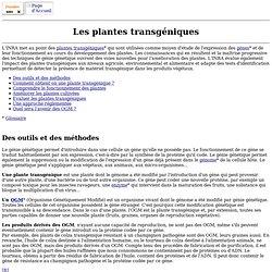 Dossier : les plantes transgéniques