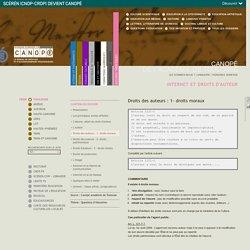 Dossiers : Internet et droits d'auteur