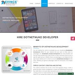 DotNetNuke Software Development Service Provider