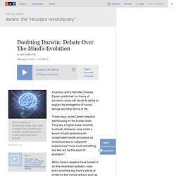 Doubting Darwin: Debate Over The Mind's Evolution