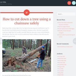 How to cut down a tree using a chainsaw safely