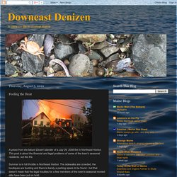 Downeast Denizen: Feeling the Heat