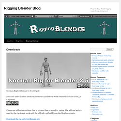 Rigging Blender Blog