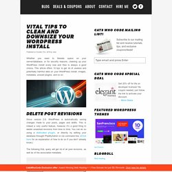Vital tips to clean and downsize your WordPress install