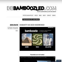 DEBAMBOOZLED.COM