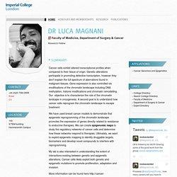 Dr Luca Magnani