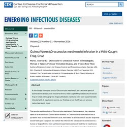 CDC EID – NOV 2016 – Au sommaire notamment : Guinea Worm (Dracunculus medinensis) Infection in a Wild-Caught Frog, Chad