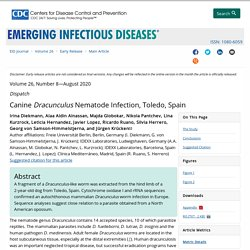 CDC EID - AOUT 2020 - Canine Dracunculus Nematode Infection, Toledo, Spain