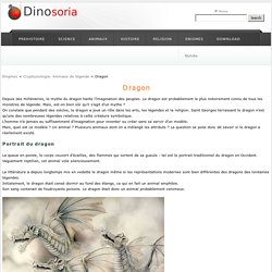 Dragon . Le Dragon a t-il vraiment existe ? . Dinosoria