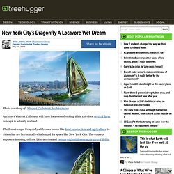 New York City's Dragonfly A Locavore Wet Dream