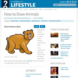 How to Draw a Bear - How to Draw Animals