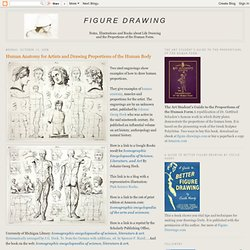 Figure Drawing: Human Anatomy for Artists and Drawing Proportions of the Human Body