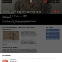 Animal Drawings Through the Ages - Exhibitions – past