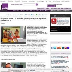 Drépanocytose : la maladie génétique la plus répandue en France