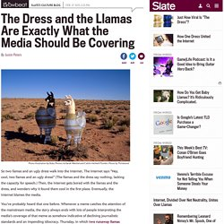 the_dress_and_the_llamas_no_the_media_isn_t_going_overboard