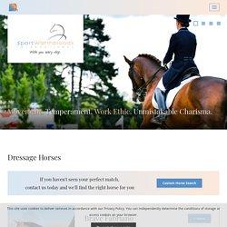 dressage horses for sale - Sport Warmbloods For Sale