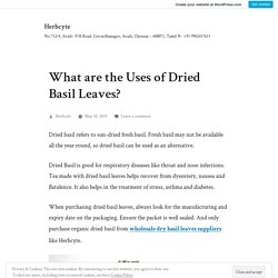 What are the Uses of Dried Basil Leaves? – Herbcyte