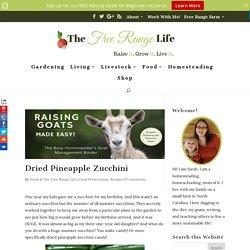 Dried Pineapple Zucchini - The Free Range Life