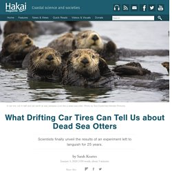 What Drifting Car Tires Can Tell Us about Dead Sea Otters