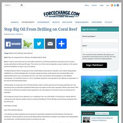 Stop Big Oil From Drilling on Coral Reef