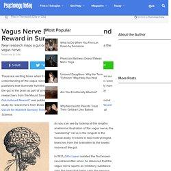 Vagus Nerve Drives Motivation and Reward in Surprising Ways