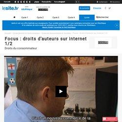 Focus : droits d'auteurs sur internet 1/2 - lesite.tv