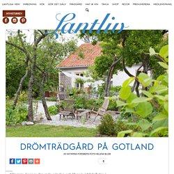 Drömträdgård på Gotland
