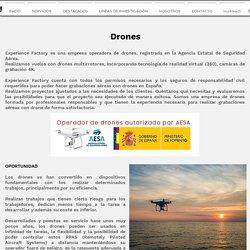 DRONES - RPAS